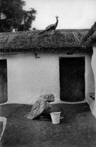 Rural courtyard, Banasthali, Rajasthan