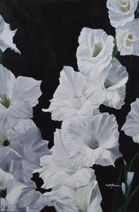 White Glads