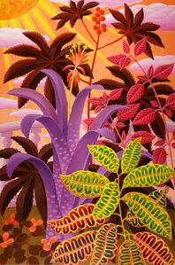 Billbergia and Croton