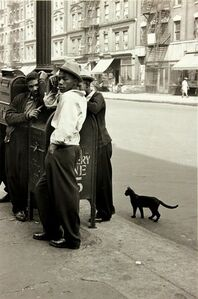 Harlem Boys with a Black Cat