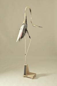 Bird #74