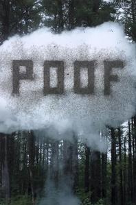 Powder POOF 1/3