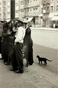 Harlem Boys with a Black Cat