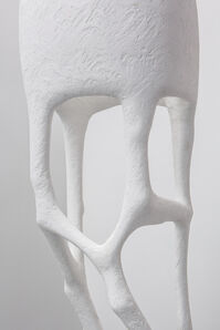 Circumspect (white)
