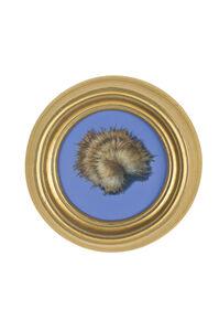 Fur (blue)