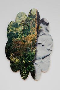 untitled landscape 1