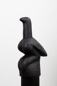 Chapungu #6 Shiri yedenga (sky bird)