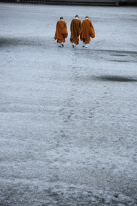 Monks stepping on the fresh snow