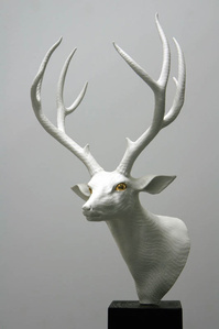 Adaptation-Deer