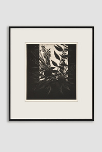 Window with Flowers Mezzotint by Robert Kipniss