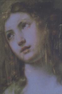 Madonna 115