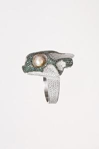 ring Turtle