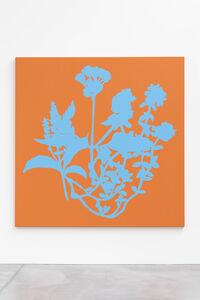 Nursery garden paintings / Head Ache/ Migraine