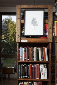Vågan Public Library, Svolvær, Lofoten, NO (2013)
