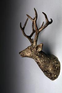 Balance - Deer B