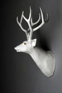 Balance - Deer A