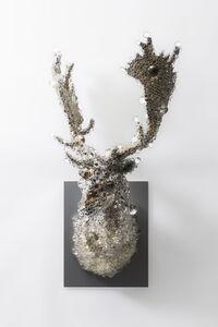 PixCell-Fallow Deer