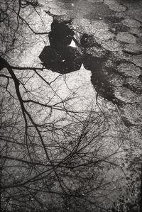 Rain Reflection NY