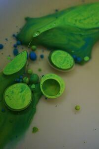 colored oil 037