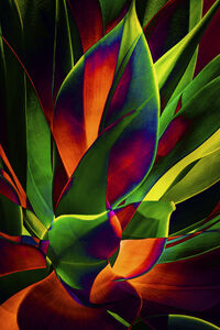 Plant Abstraction 10