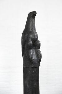 Chapungu #1 Shiri yedenga (sky bird)