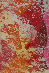 Static Image Painting/ Red/ Cat/ Largo Argentina