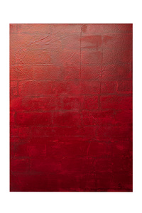 Red Figuracion I