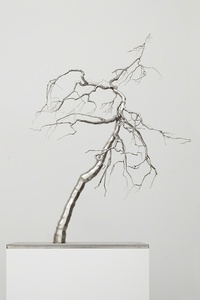 Roxy Paine: Farewell Transmission