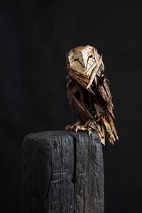 Ghost Owl, Ed 1/1