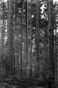 Bodenprobe – Esslingen