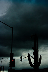 Saguaro Stoplight