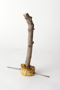 Emergency Weapon #29 (frothy ochre with twig)