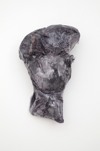 Untitled (bloat/leg)