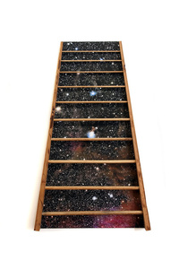 Barton's Ladder
