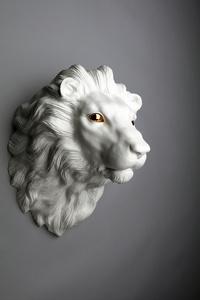 84. A Lion
