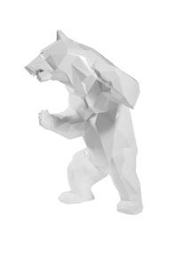 White Wild Bear