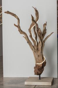 Untitled Wood Series #2