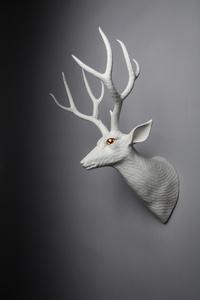 Mule Deer - Left