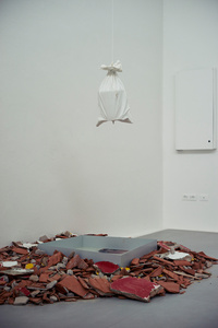 Occupations/Discoveries (Installation view)