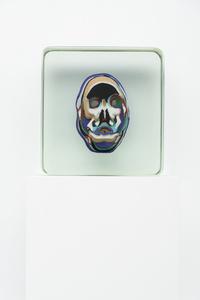 Untitled Skull 14