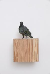 Pigeonner (Vert de gris)