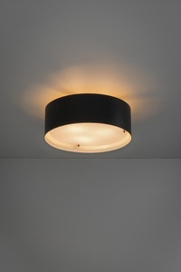 Ceiling light 410