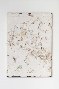 Untitled (Bianco Ikebana 05052016)