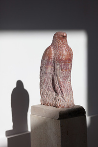 Red Marble Hawk