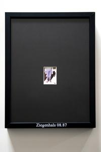 Ziegenhals, Framed Memories #Berlin