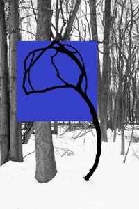 Blue 762