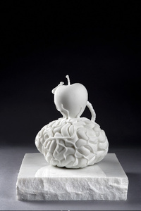 Brain of an atheist