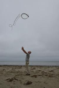Kelp thrown into a grey, overcast sky Drakes Beach, California 14 July 2013