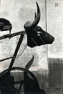 Bicicleta con cabeza de toro