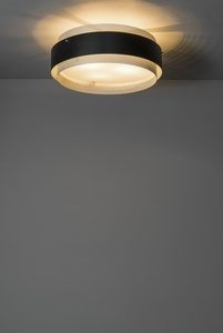 Ceiling light 310